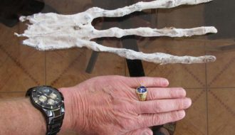 A bizarre 3-fingered mummified hand found in the Peruvian desert tunnel
