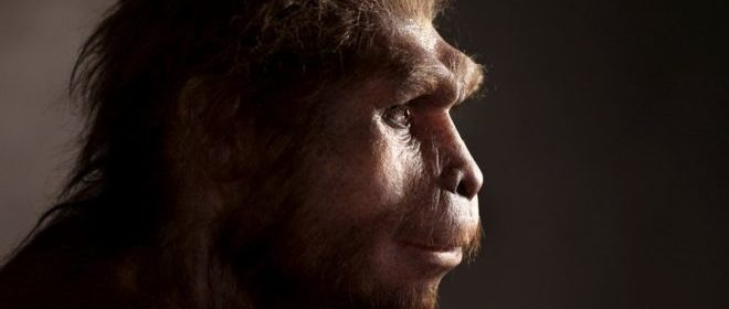 Fossils From Some of the Last Homo Erectus Hint at the End of the Long-Lived Species