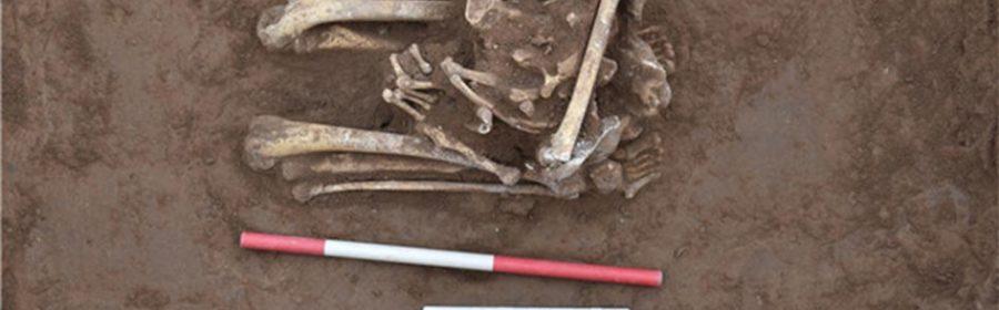 Kneeling Decapitated Skeleton was Ancient Chinese Sacrifice Victim