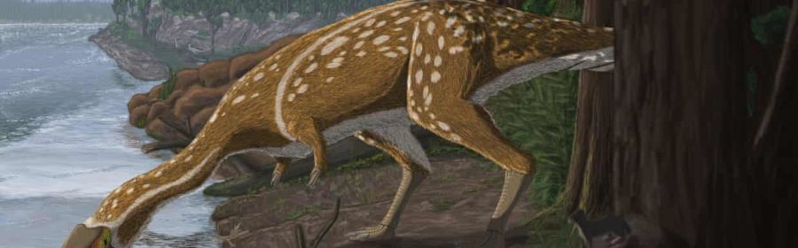 Rare long-necked dinosaur that roamed the polar world unearthed in Australia