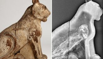 70 Million Mummified Animals in Egypt Reveal Dark Secret of Ancient Mummy Industry
