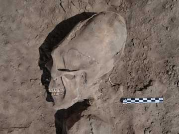 13 Individuals With Elongated Skulls Stun Archaeologists, Never Seen Before In Region