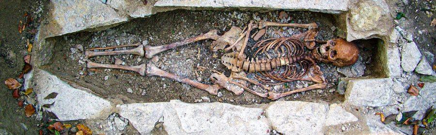 'Viking' was a job description, not a matter of heredity, massive ancient DNA study shows