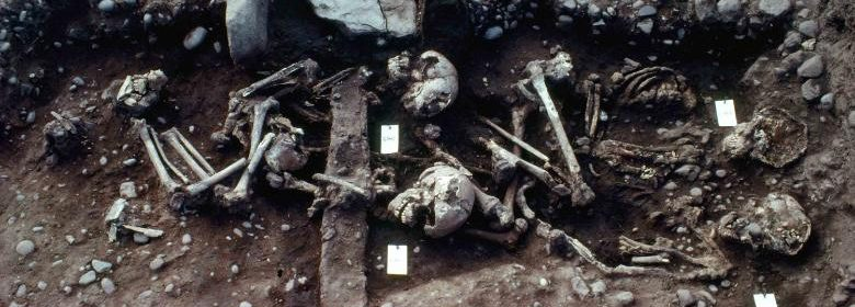 Mass grave of 'Viking Great Army' buried in vicarage garden identified by archaeologists