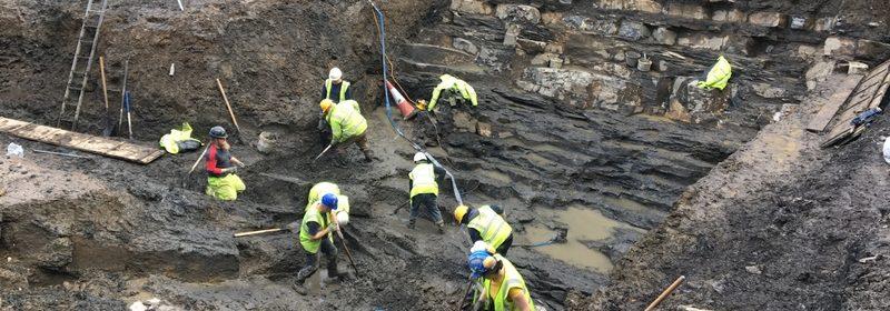 Earliest Viking settlement in Dublin seen in new light
