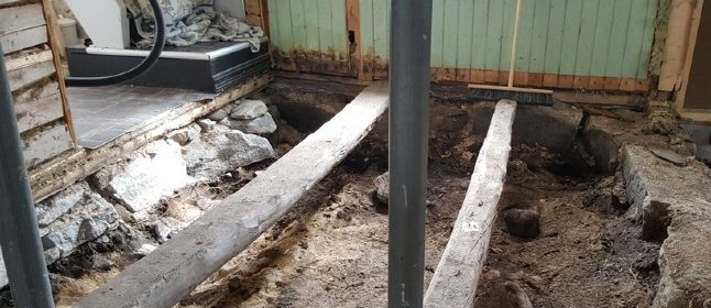 Norway couple find Viking grave under floor of their house