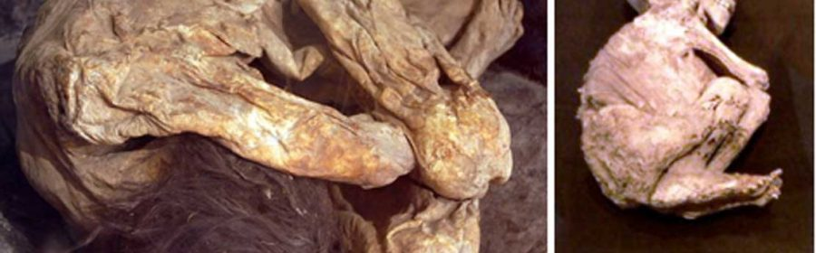 Lemon Grove, California is known for its giant lemon...and mummified bodies