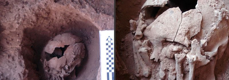 More than 9,000-year-old decapitated head discovered in Brazil