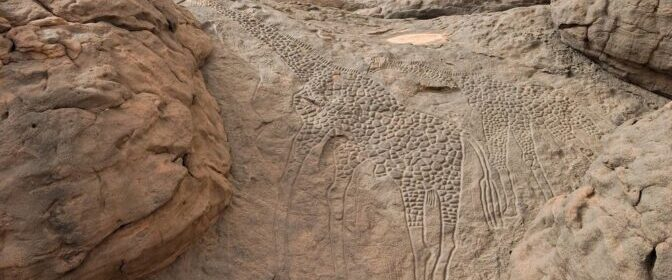 The World's Largest Rock Art Petroglyph is this carving of giraffe in Niger, Africa