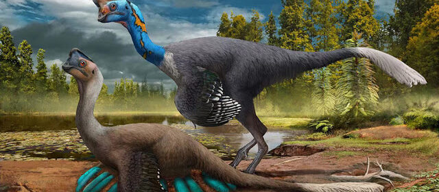 Researchers Make Extraordinary Discovery Of Fossilized Dinosaur Sitting On Egg-Filled Nest