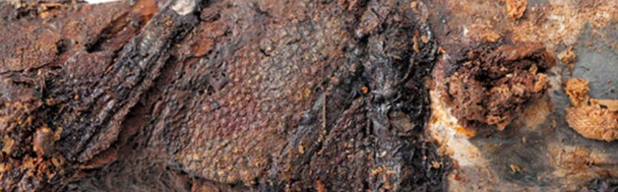 6th century AD tomb yields the longest sword from ancient Japan