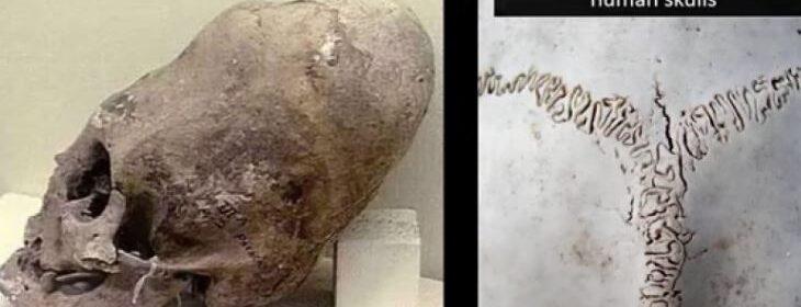 Prehistoric aliens in Malta? Hypogeum's trove of elongated skulls to get cutting-edge study